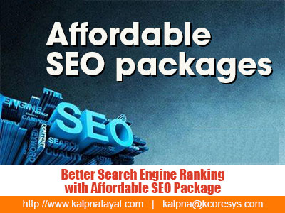 Better Search Engine Ranking with Affordable SEO Package