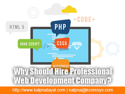 Why Should Hire Professional Web Development Company?